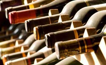 grape farm, farm investment, wine production