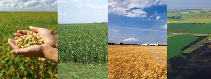 加拿大农场, 加拿大农业, 加拿大食品, 加拿大