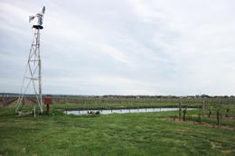 CCAGR,加拿大农场,加拿大移民,投资加拿大, 加拿大葡萄园,加拿大豪宅