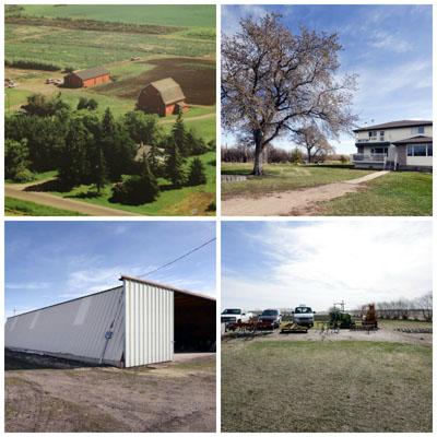 CCAGR,加拿大农场,加拿大移民,投资加拿大, 加拿大阿尔伯特省的多种莓果农场