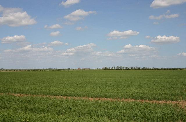 CCAGR,加拿大农场,加拿大移民,投资加拿大, 大多地区的养殖和种植农场