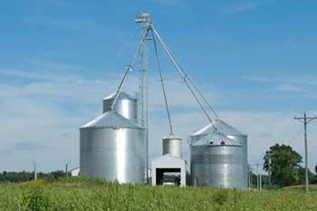 粮食设备齐全,大型大豆玉米农场