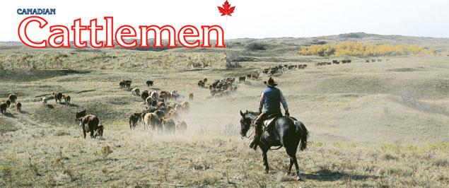加拿大牛肉产业,加拿大肉牛生产
